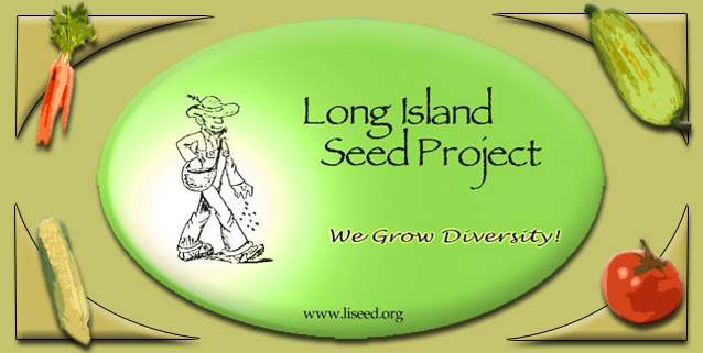 liseed logo